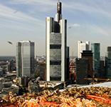 Spaziergang Klimawandel Frankfurt
