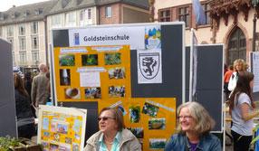 goldsteinschule